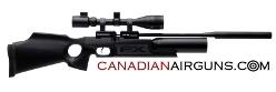 CanadianAirguns.com logo